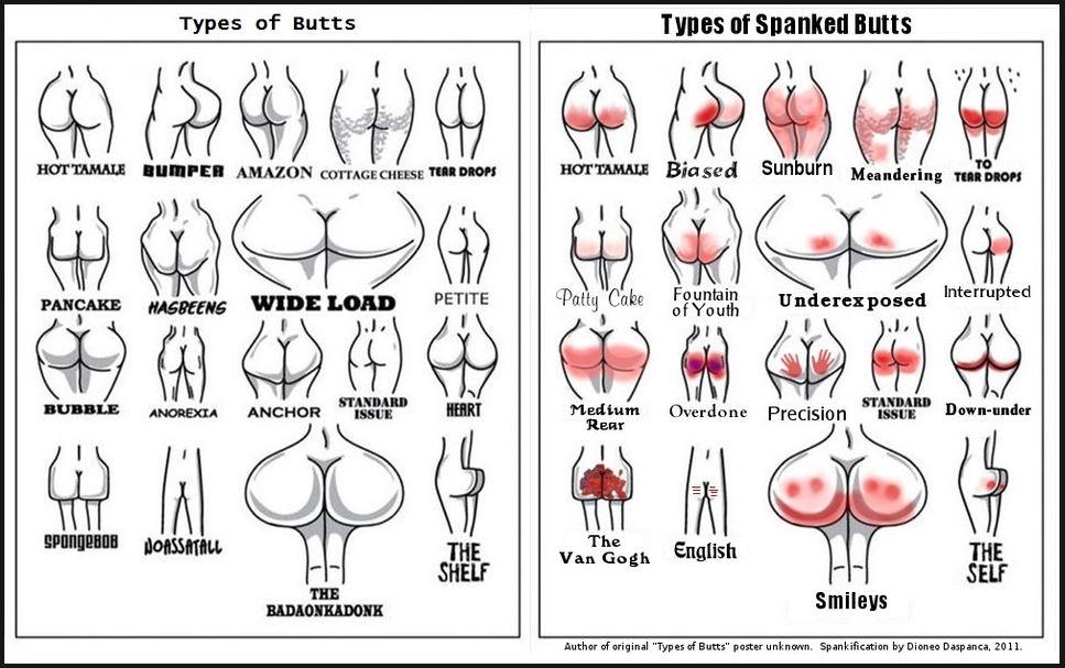 Different shapes of backsides